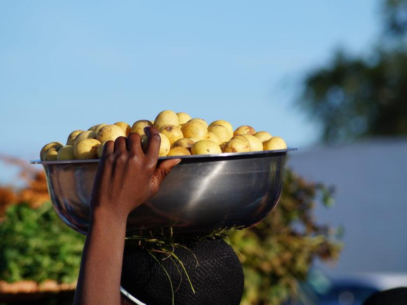 Marula Festival Eswatini